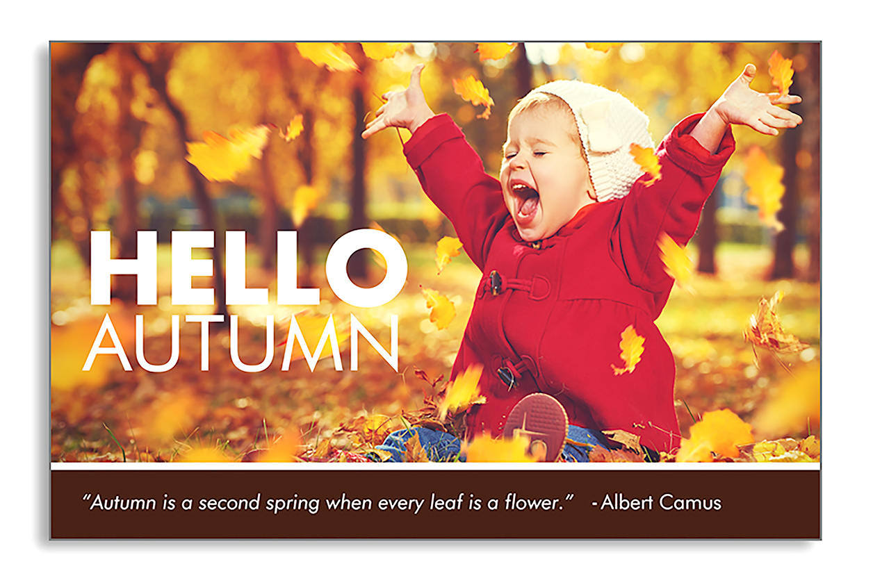 Autumn marketing postcard for agents